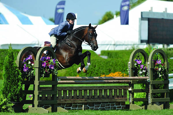 Bridgehampton life centers around horses and being close to nature
