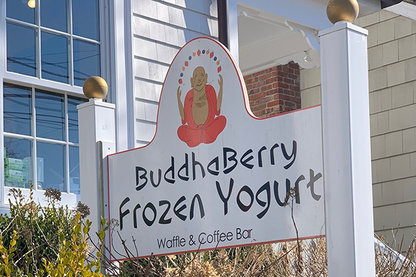 Buddhaberry Ice Cream and Yogurt is not to be missed